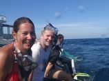 Snorkeling for Dugongs