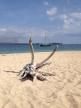 MOKEN Moored off North Pandan Island