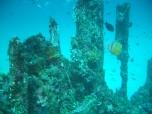 Sabang Wreck