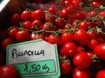 Gorgeous Tomatoes
