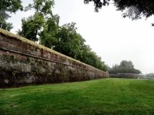 Lucca's City Walls