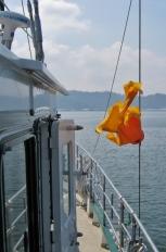 The Sunfish Flies Again