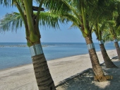 White Corals Beach Resort in Morong