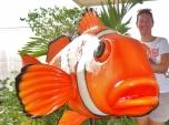 Ocean Adventure With Nemo