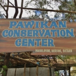 Pawikan Centre