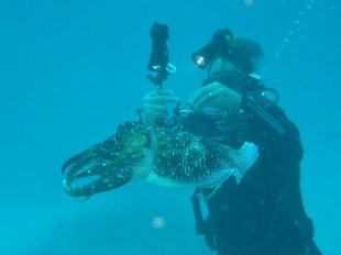 Chris & A Cuttlefish
