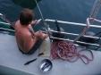 Chris Cleaning Tuna