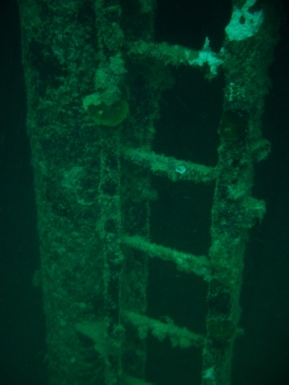 Olympia Maru, Ladder