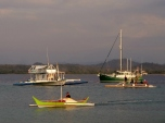Rush Hour at North Pandan Island