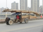 Bamboo Delivery