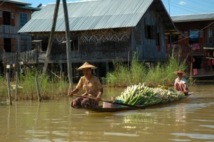 Boatload of Produce (Inle Lake, 2005)
