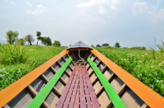 In the Canals (Inle Lake)