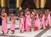 Nuns at Shwedagon