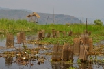 Traps (Inle Lake)