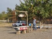 Roadside Fish Vendor