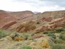 Semi Desert near Gareja