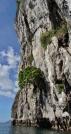 Look Way Up