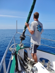 Watching for Dolphins