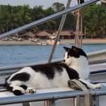 Relaxing after a Hard Day of Cruising