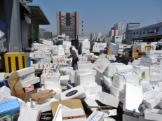 Mountains of Styrofoam Bins