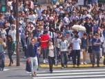 Shibuya Crossing by Day