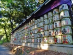 Wall of Sake