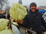 giant-cabbages