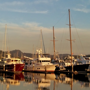 subic-bay-yacht-club