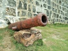 Cannon