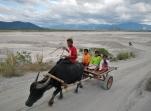 Lahar Flats of the Santo Tomas River