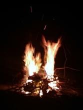 Bonfire at The Island