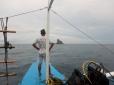 Approaching Shark Point