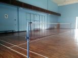 Badminton Anyone