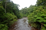 maliau river