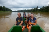 on the kinabatangan