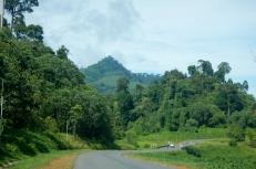 on the road to maliau