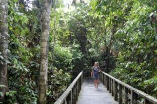 sepilot orangutan centre