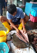 Buying Tuna at the Fish Market