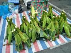 Creative Corn Display