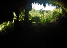 14 Great Cave, West Mouth