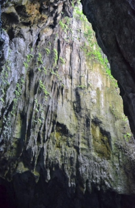 Clearwater Cave 4